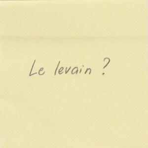 13_Levain